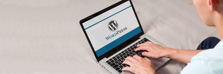 why choose wordpress website development